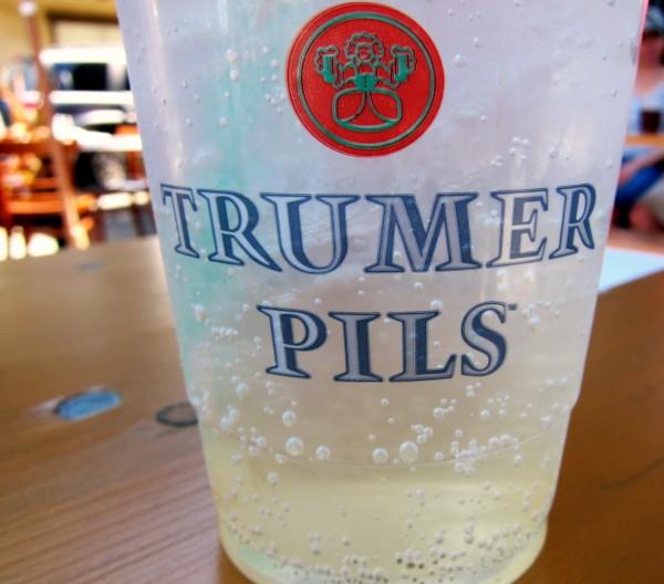 Elderflower Soda Recipe — Dishmaps